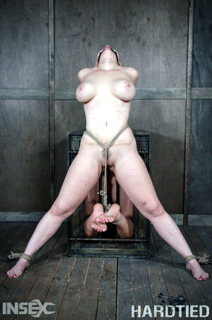 bdsm couple